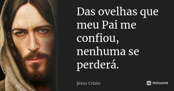 Das ovelhas que meu Pai me confiou, nenhuma se perderá.... Frase de Jesus Cristo.