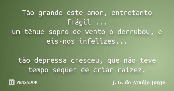 Tão grande este amor, entretanto frágil ... um tênue sopro de vento o derrubou, e eis-nos infelizes... tão depressa cresceu, que não teve tempo sequer de criar ... Frase de J. G. de Araújo Jorge.