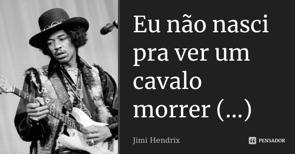 Eu não nasci pra ver um cavalo morrer (...)... Frase de Jimi Hendrix.