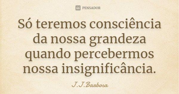 Só teremos consciencia da nossa grandeza quando percebermos nossa insignificância.... Frase de J J Barbosa.