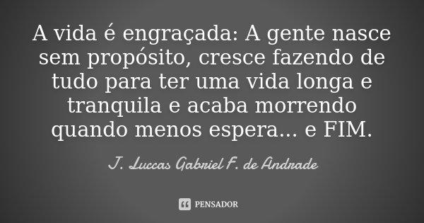 A vida é engraçada: A gente nasce sem propósito, cresce fazendo de tudo para ter uma vida longa e tranquila e acaba morrendo quando menos espera... e FIM.... Frase de J. Luccas Gabriel F. de Andrade.