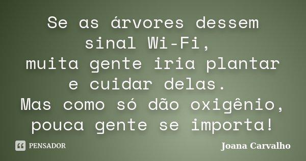 Se as árvores dessem sinal Wi-Fi, muita gente iria plantar e cuidar delas. Mas como só dão oxigênio, pouca gente se importa!... Frase de Joana Carvalho.