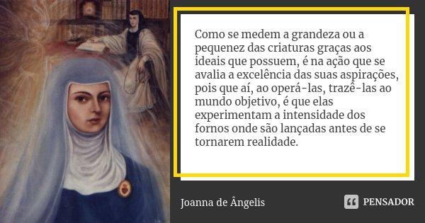 Como se medem a grandeza ou a pequenez das criaturas graças aos ideais que possuem, é na ação que se avalia a excelência das suas aspirações, pois que aí, ao op... Frase de Joanna De Ângelis.