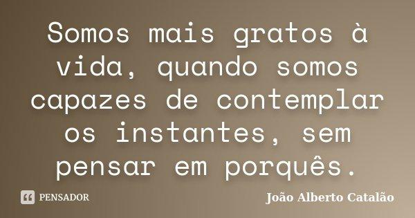 Somos mais gratos à vida, quando somos capazes de contemplar os instantes, sem pensar em porquês.... Frase de João Alberto Catalão.