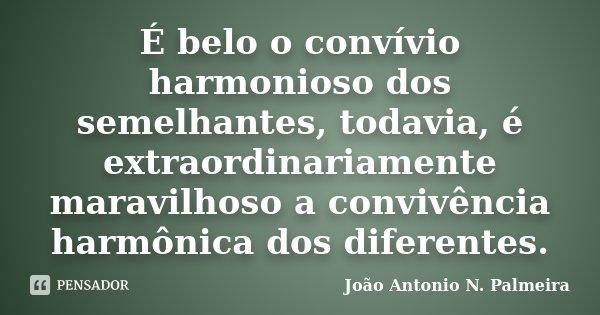 É belo o convívio harmonioso dos semelhantes, todavia, é extraordinariamente maravilhoso a convivência harmônica dos diferentes.... Frase de João Antonio N. Palmeira.