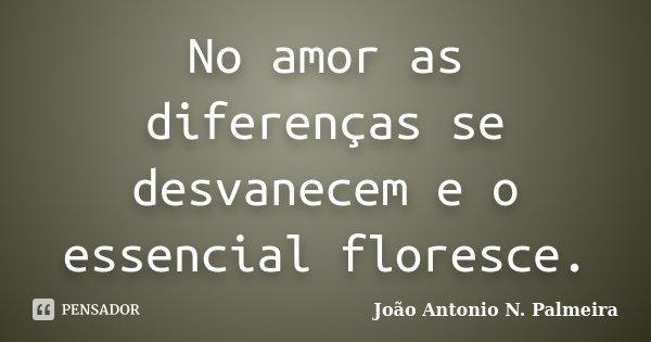 No amor as diferenças se desvanecem e o essencial floresce.... Frase de João Antonio N. Palmeira.