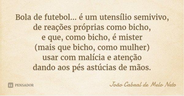 Bola de futebol... é um utensílio semivivo, de reações próprias como bicho, e que, como bicho, é mister (mais que bicho, como mulher) usar com malícia e atenção... Frase de João Cabral de Melo Neto.