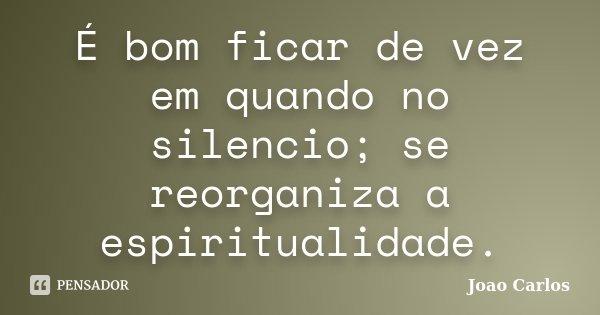 É bom ficar de vez em quando no silencio; se reorganiza a espiritualidade.... Frase de João Carlos.