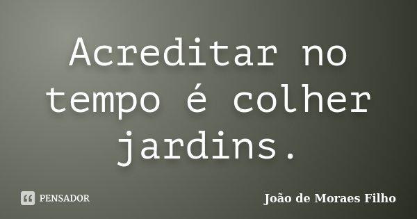 Acreditar no tempo é colher jardins.... Frase de João de Moraes Filho.