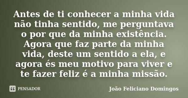 Antes de ti conhecer a minha vida não tinha sentido, me perguntava o por que da minha existência. Agora que faz parte da minha vida, deste um sentido a ela, e a... Frase de João Feliciano Domingos.