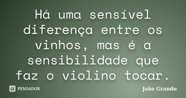 Há uma sensível diferença entre os vinhos, mas é a sensibilidade que faz o violino tocar.... Frase de João Grando.