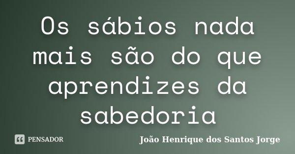 Os sábios nada mais são do que aprendizes da sabedoria... Frase de João Henrique dos Santos Jorge.