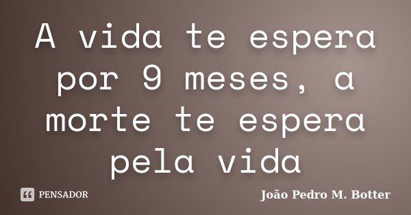 A vida te espera por 9 meses, a morte te espera pela vida... Frase de João Pedro M. Botter.