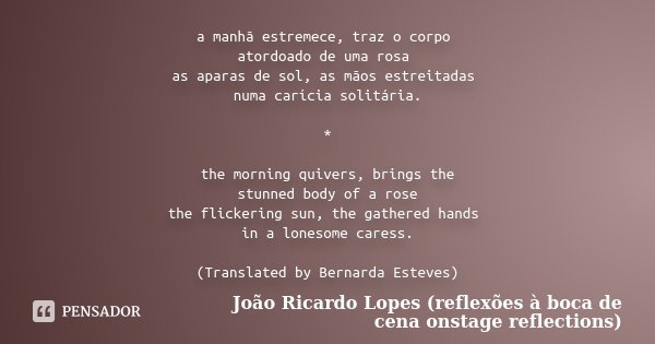 a manhã estremece, traz o corpo atordoado de uma rosa as aparas de sol, as mãos estreitadas numa carícia solitária. * the morning quivers, brings the stunned bo... Frase de João Ricardo Lopes (reflexões à boca de cena onstage reflections).