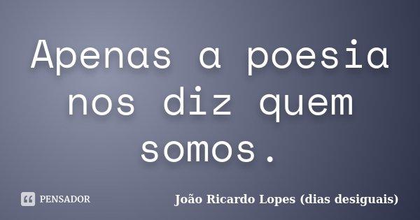 Apenas a poesia nos diz quem somos.... Frase de João Ricardo Lopes (dias desiguais).
