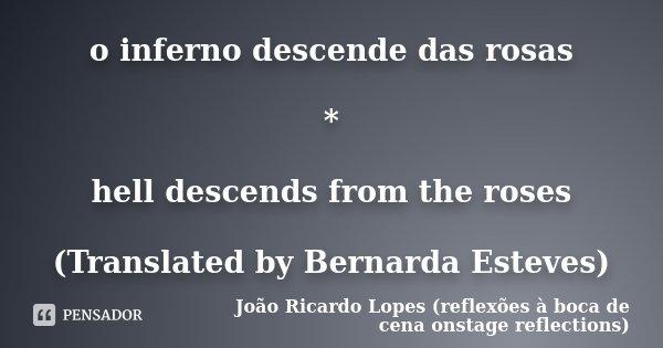 o inferno descende das rosas * hell descends from the roses (Translated by Bernarda Esteves)... Frase de João Ricardo Lopes (reflexões à boca de cena onstage reflections).