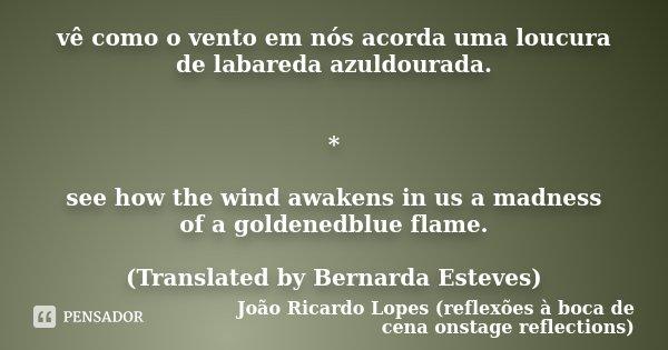 vê como o vento em nós acorda uma loucura de labareda azuldourada. * see how the wind awakens in us a madness of a goldenedblue flame. (Translated by Bernarda E... Frase de João Ricardo Lopes (reflexões à boca de cena onstage reflections).