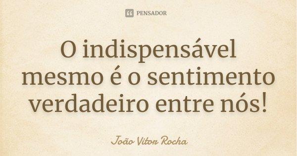 O indispensável mesmo é o sentimento verdadeiro entre nós!... Frase de João Vitor Rocha.