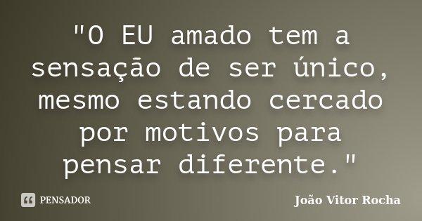 """""""O EU amado tem a sensação de ser único, mesmo estando cercado por motivos para pensar diferente.""""... Frase de João Vitor Rocha."""