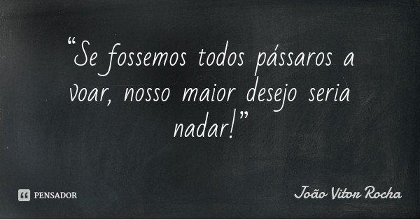 """""""Se fossemos todos pássaros a voar, nosso maior desejo seria nadar!""""... Frase de João Vitor Rocha."""