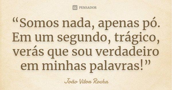 """""""Somos nada, apenas pó. Em um segundo, trágico, verás que sou verdadeiro em minhas palavras!""""... Frase de João Vitor Rocha."""