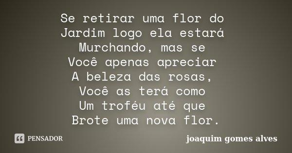 Se retirar uma flor do Jardim logo ela estará Murchando, mas se Você apenas apreciar A beleza das rosas, Você as terá como Um troféu até que Brote uma nova flor... Frase de Joaquim Gomes Alves.