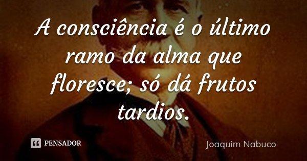 A consciência é o último ramo da alma que floresce; só dá frutos tardios.... Frase de Joaquim Nabuco.