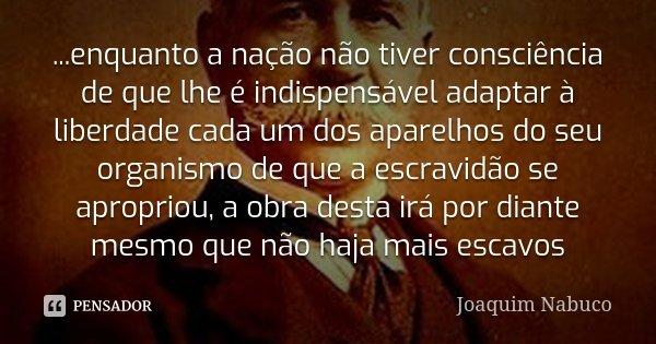...enquanto a nação não tiver consciência de que lhe é indispensável adaptar à liberdade cada um dos aparelhos do seu organismo de que a escravidão se apropriou... Frase de Joaquim Nabuco.