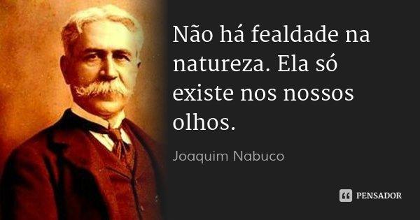 Não há fealdade na natureza. Ela só existe nos nossos olhos.... Frase de Joaquim Nabuco.