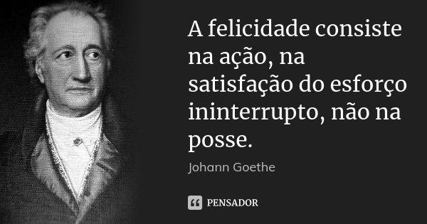 A felicidade consiste na ação, na satisfação do esforço ininterrupto, não na posse.... Frase de Johann Goethe.