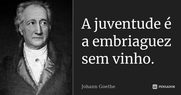 A juventude é a embriaguez sem vinho.... Frase de Johann Goethe.