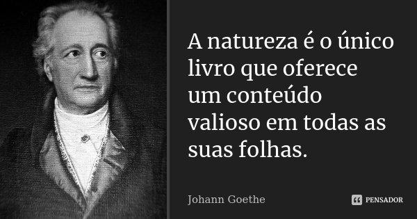 A natureza é o único livro que oferece um conteúdo valioso em todas as suas folhas.... Frase de Johann Goethe.