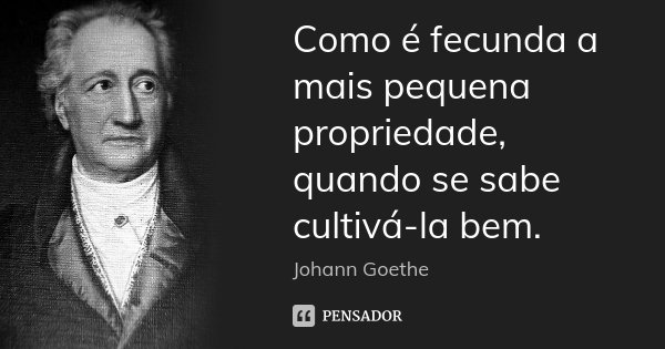 Como é fecunda a mais pequena propriedade, quando se sabe cultivá-la bem.... Frase de Johann Goethe.