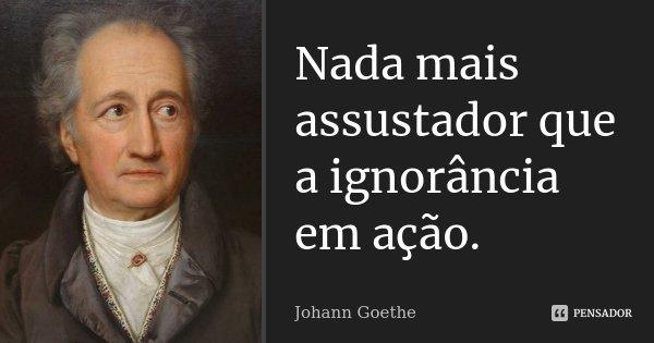 Nada mais assustador que a ignorância em ação.... Frase de Johann Goethe.