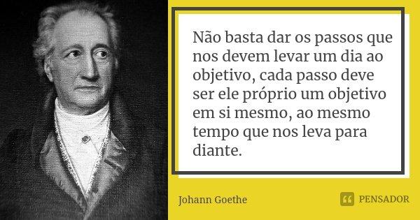 Não basta dar os passos que nos devem levar um dia ao objetivo, cada passo deve ser ele próprio um objetivo em si mesmo, ao mesmo tempo que nos leva para diante... Frase de Johann Goethe.