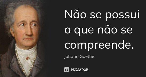 Não se possui o que não se compreende.... Frase de Johann Goethe.