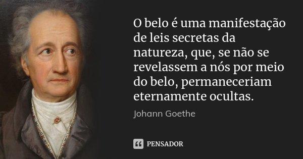 O belo é uma manifestação de leis secretas da natureza, que, se não se revelassem a nós por meio do belo, permaneceriam eternamente ocultas.... Frase de Johann Goethe.
