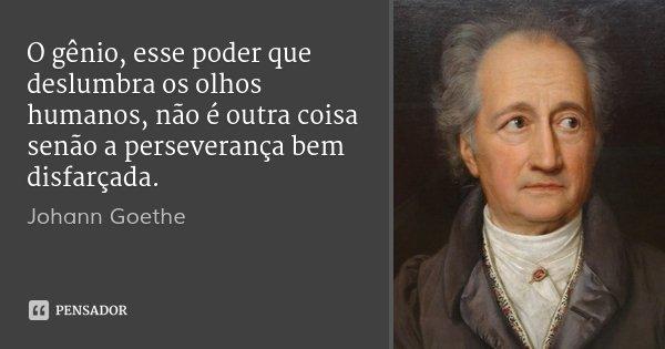 O gênio, esse poder que deslumbra os olhos humanos, não é outra coisa senão a perseverança bem disfarçada.... Frase de Johann Goethe.