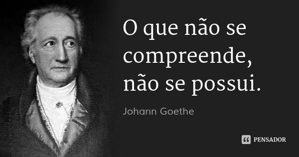 O que não se compreende, não se possui.... Frase de Johann Goethe.