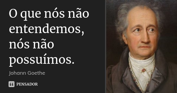 O que nós não entendemos, nós não possuímos.... Frase de Johann Goethe.