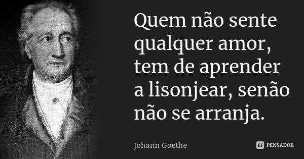 Quem não sente qualquer amor, tem de aprender a lisonjear, senão não se arranja.... Frase de Johann Goethe.