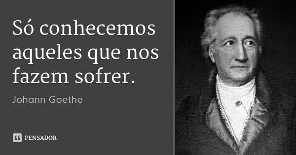 Só conhecemos aqueles que nos fazem sofrer.... Frase de Johann Goethe.