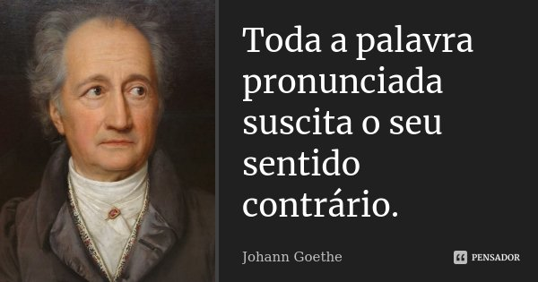 Toda a palavra pronunciada suscita o seu sentido contrário.... Frase de Johann Goethe.