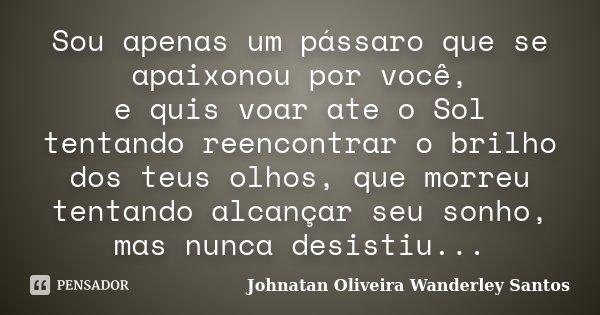 Sou apenas um pássaro que se apaixonou por você, e quis voar ate o Sol tentando reencontrar o brilho dos teus olhos, que morreu tentando alcançar seu sonho, mas... Frase de Johnatan Oliveira Wanderley Santos.