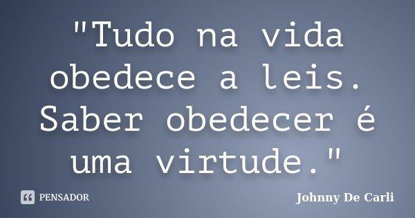"""""""Tudo na vida obedece a leis. Saber obedecer é uma virtude.""""... Frase de Johnny De' Carli."""
