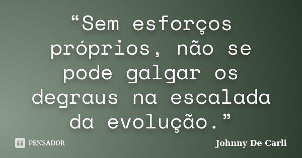"""""""Sem esforços próprios, não se pode galgar os degraus na escalada da evolução.""""... Frase de Johnny De' Carli."""