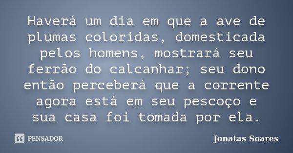 Haverá um dia em que a ave de plumas coloridas, domesticada pelos homens, mostrará seu ferrão do calcanhar; seu dono então perceberá que a corrente agora está e... Frase de Jonatas Soares.
