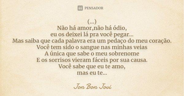 (...) Não há amor,não há ódio, eu os deixei lá pra você pegar... Mas saiba que cada palavra era um pedaço do meu coração. Você tem sido o sangue nas minhas veia... Frase de Jon Bon Jovi.