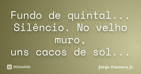 Fundo de quintal... Silêncio. No velho muro, uns cacos de sol...... Frase de Jorge Fonseca Jr..