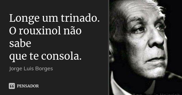 Longe um trinado. O rouxinol não sabe que te consola.... Frase de Jorge Luis Borges.